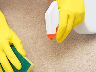 Eco Friendly Products and Its Purpose | Carpet Cleaning Beverly Hills