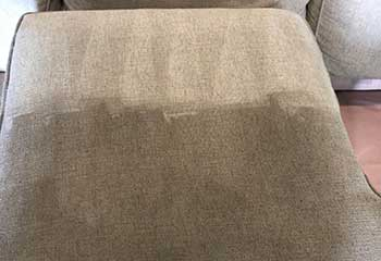 Professional Upholstery Cleaner - Beverlywood